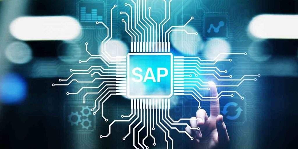 SAP Environment
