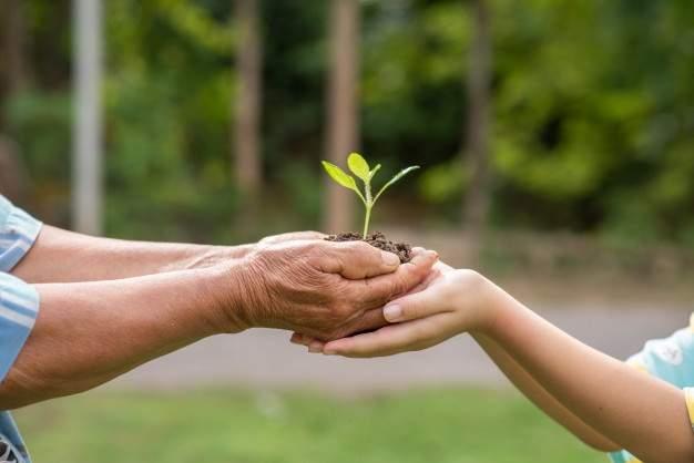 Kids More Environmentally